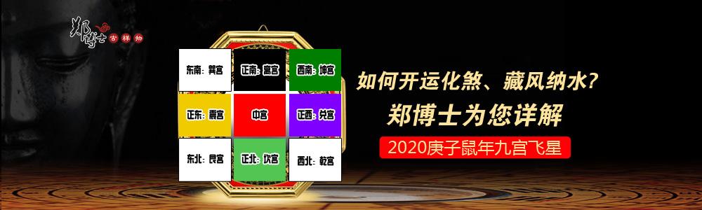 郑博士吉祥物官网 2020鼠年 九宫飞星